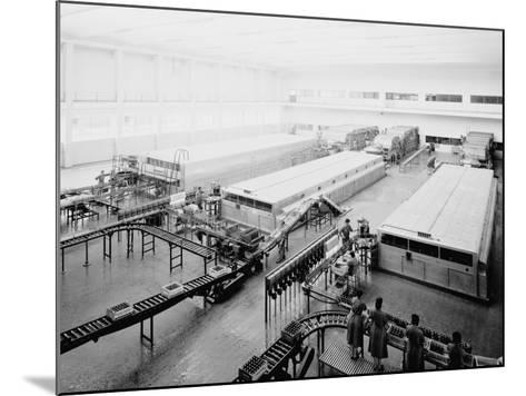 The Bottling Department at the Peroni Factory in Naples-A^ Villani-Mounted Photographic Print