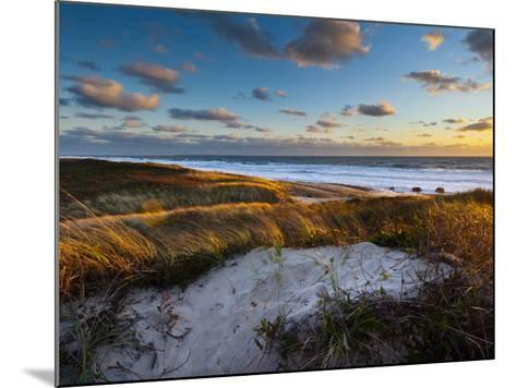 Sunset Along Moshup Beach, Martha's Vineyard with View of Ocean and Grass Blowing During Late Fall-James Shive-Mounted Photographic Print