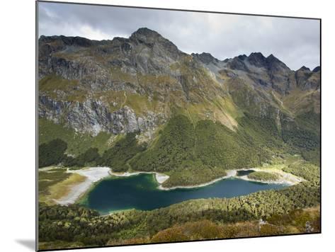 The Routeburn Trak in Mount Aspiring National Park Located in Ne-Sergio Ballivian-Mounted Photographic Print