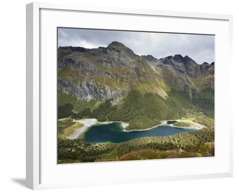 The Routeburn Trak in Mount Aspiring National Park Located in Ne-Sergio Ballivian-Framed Art Print