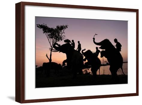 Silhouette of Thai Mahouts and Elephants with One on the Left Holding Krathong-Rungroj Yongrit-Framed Art Print