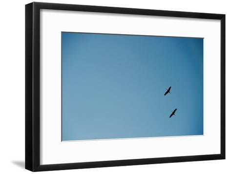 Two Common Cranes-Patrick Peul-Framed Art Print