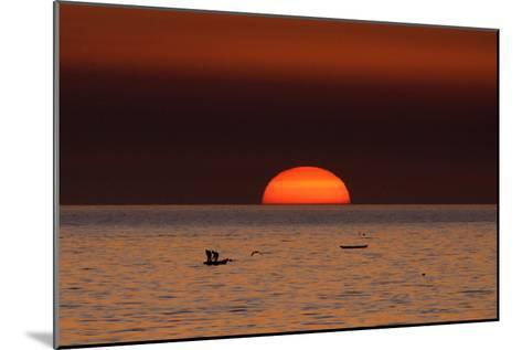 Fishermen Lay their Nets in the Sea as the Sun Sets-Mohammed Saber-Mounted Photographic Print