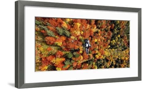 A Paraglider Flying over a Colourful Forest-Dietmar Stiplovsek-Framed Art Print
