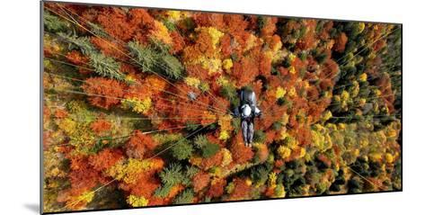 A Paraglider Flying over a Colourful Forest-Dietmar Stiplovsek-Mounted Photographic Print
