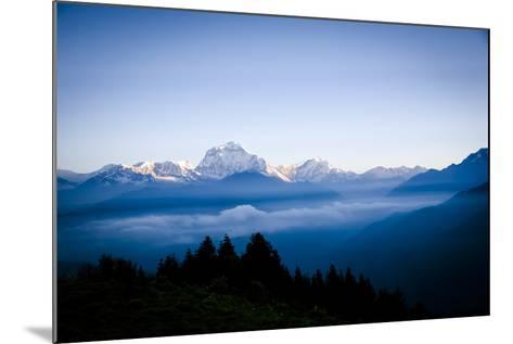 Dhaulagiri, an 8000 Meter Peak in the Morning Sun, Poon Hill, Annapurna Circuit, Ghorepani, Nepal-Dan Holz-Mounted Photographic Print