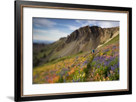 A Woman Enjoys a Morning Trail Run in a Meadow of Wildflowers at Snowbird Ski and Summer Resort, Ut-Adam Barker-Framed Art Print