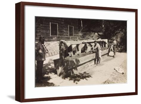 Free State of Verhovac-July 1916: Italian Soldiers at a Washboard of Chiampiul--Framed Art Print