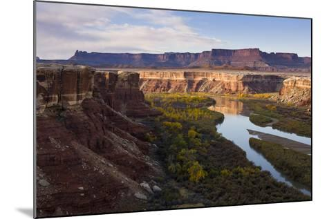 The Green River as Seen from the White Rim Trail in Canyonlands National Park, Utah-Sergio Ballivian-Mounted Photographic Print