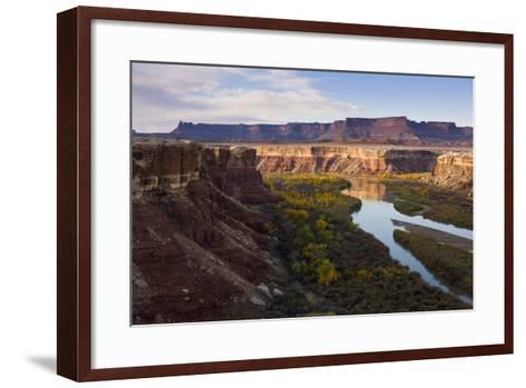 The Green River as Seen from the White Rim Trail in Canyonlands National Park, Utah-Sergio Ballivian-Framed Art Print
