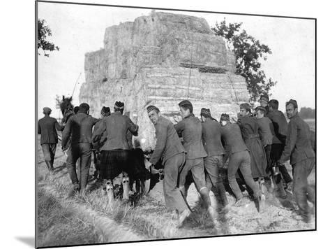 A Group of British Pows in Germany, Transporting Hay for the Troops' Straw Beds--Mounted Photographic Print