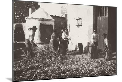 Farmers Beating the Grain-Nicola Biondi-Mounted Photographic Print