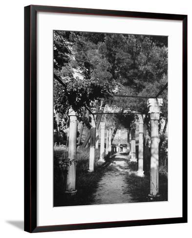Pergola Held Up by Columns in Salin, Croatia-Dusan Stanimirovitch-Framed Art Print