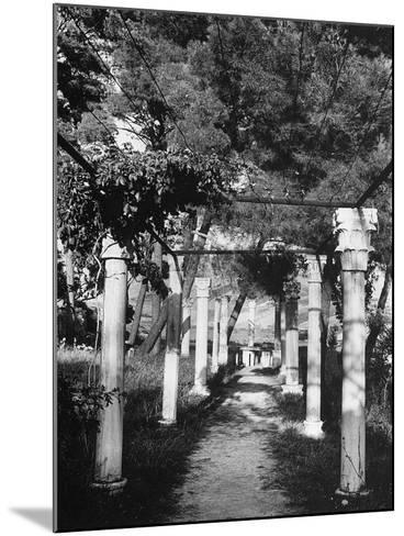 Pergola Held Up by Columns in Salin, Croatia-Dusan Stanimirovitch-Mounted Photographic Print
