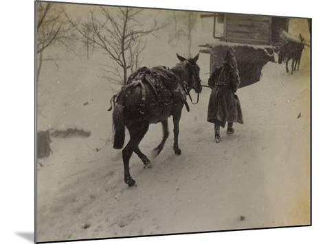 Soldier with Mule in the Valley Doblar During the First World War-Luigi Verdi-Mounted Photographic Print