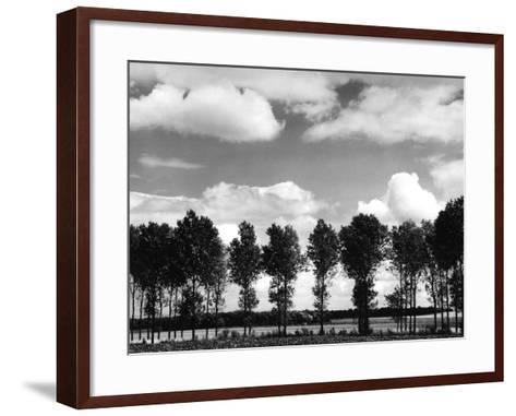 Trees on the Bank of a River-Dusan Stanimirovitch-Framed Art Print