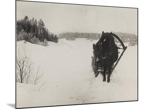 First World War: A Horse-Drawn Sleigh in the Snow--Mounted Photographic Print
