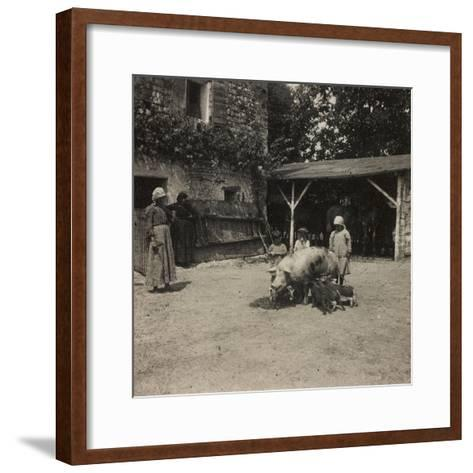 WWI: Inhabitants of Soleschiano with a Sow--Framed Art Print