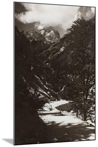 Janolih Mount--Mounted Photographic Print