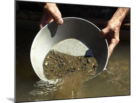 Reenactor Panning for Gold on the American River, Where the Gold Rush Started, Coloma, California--Mounted Photographic Print