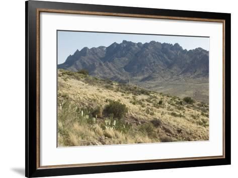 Florida Mountains of the Mexico Borderland Seen From Rockhound State Park, New Mexico--Framed Art Print