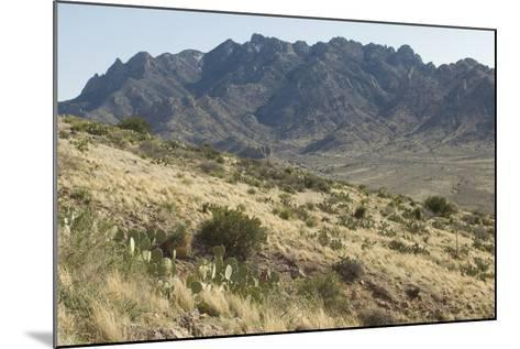 Florida Mountains of the Mexico Borderland Seen From Rockhound State Park, New Mexico--Mounted Photographic Print