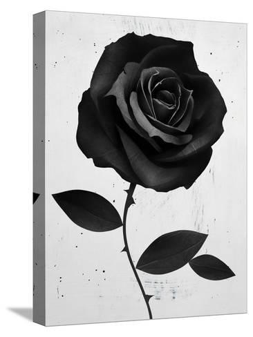 Fabric Rose-Ruben Ireland-Stretched Canvas Print