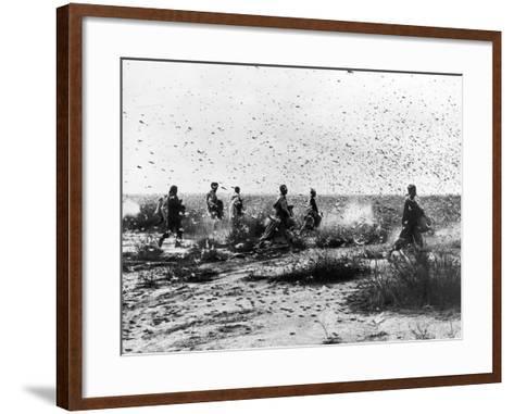 Morocco: Locusts, 1954--Framed Art Print