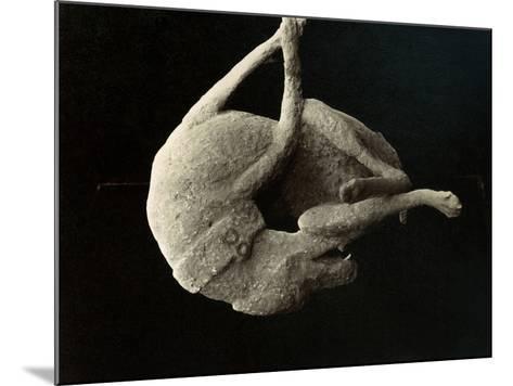 Pompeii: Plaster Cast--Mounted Photographic Print