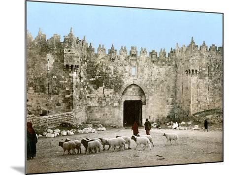 Jerusalem: Damascus Gate--Mounted Photographic Print