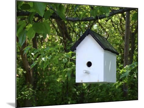 White Birdhouse-Anna Miller-Mounted Photographic Print