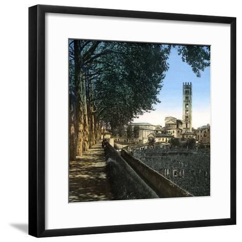 Lucca (Italy), the San Frediano Church (1112-1147), Circa 1895-Leon, Levy et Fils-Framed Art Print