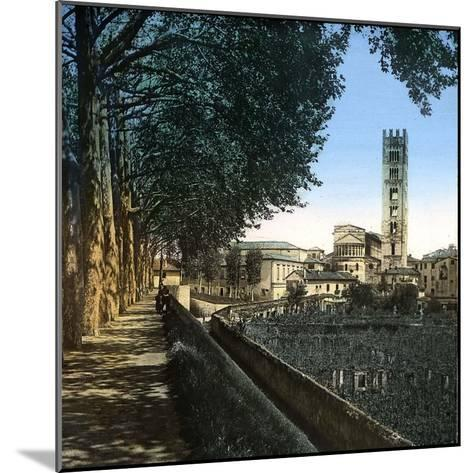 Lucca (Italy), the San Frediano Church (1112-1147), Circa 1895-Leon, Levy et Fils-Mounted Photographic Print