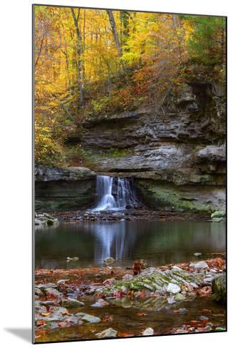 Autumn waterfall in McCormics Creek State Park, Indiana, USA-Anna Miller-Mounted Photographic Print