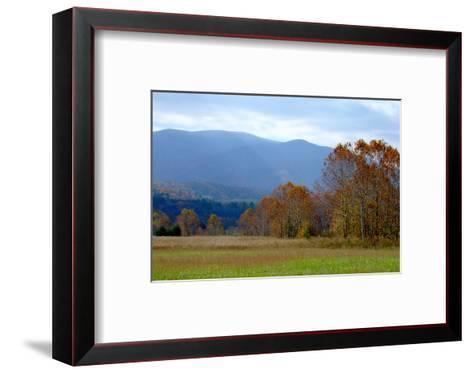 Autumn in Cades Cove, Smoky Mountains National Park, Tennessee, USA-Anna Miller-Framed Art Print