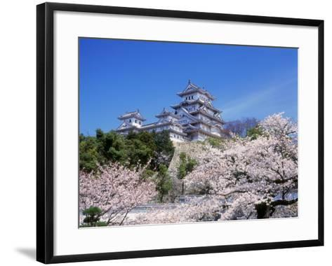 Cherry Blossoms and Himeji Castle--Framed Art Print