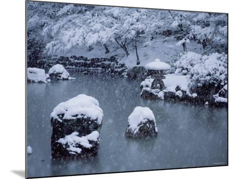 Maruyama Park--Mounted Photographic Print