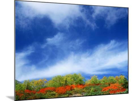 Mt. Norikura--Mounted Photographic Print