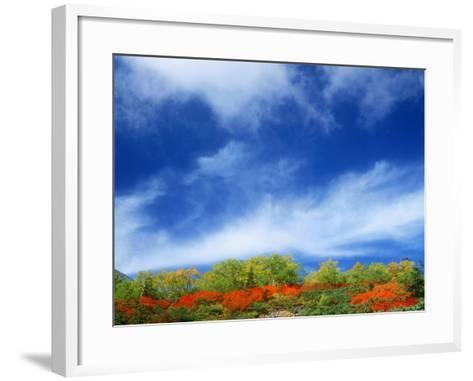 Mt. Norikura--Framed Art Print