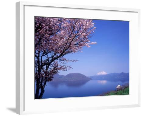Cherry Blossoms and Lake Toyah--Framed Art Print