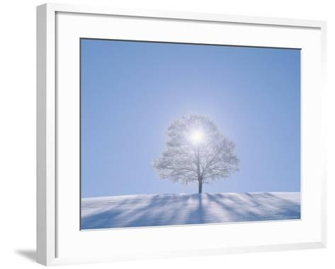 A Tree in the Snow Field--Framed Art Print