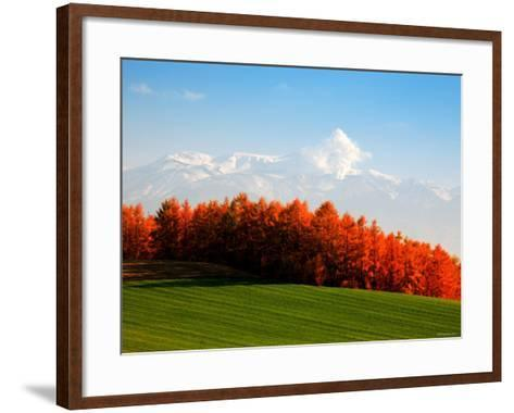 Autumn Landscape--Framed Art Print