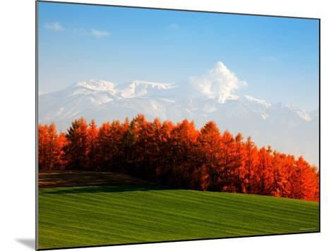 Autumn Landscape--Mounted Photographic Print