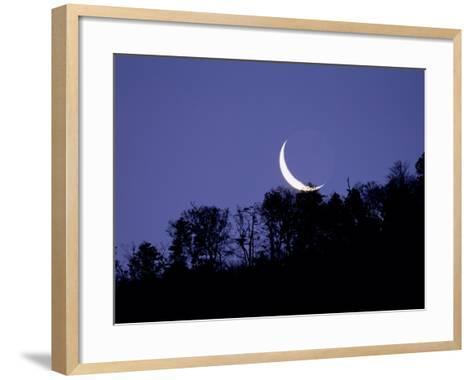Moon Over the Forest--Framed Art Print