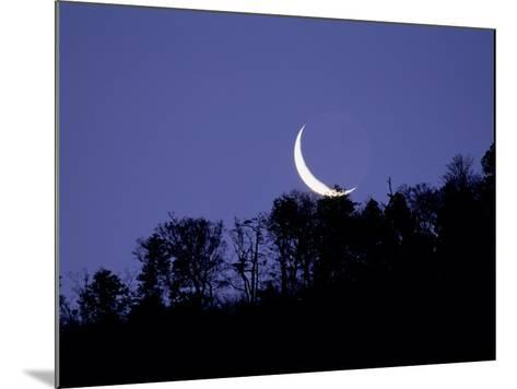 Moon Over the Forest--Mounted Photographic Print