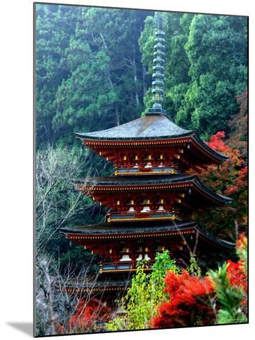 Autumn Leaves at Hase Temple--Mounted Photographic Print