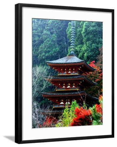 Autumn Leaves at Hase Temple--Framed Art Print