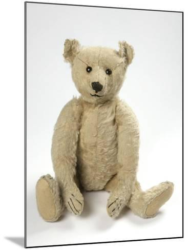 Teddy Bear in Yorkshire Cloth--Mounted Photographic Print