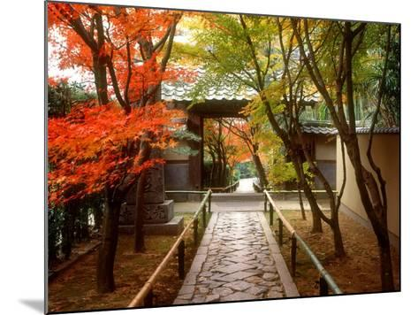 Koetsuji Temple in Autumn--Mounted Photographic Print