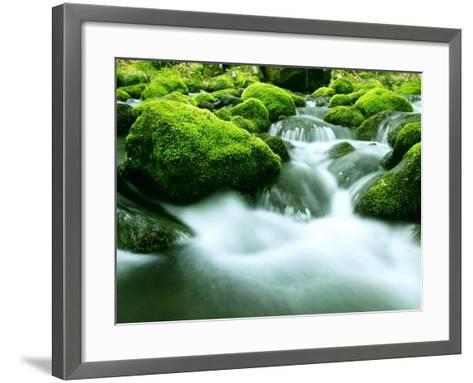 Mountain Stream--Framed Art Print